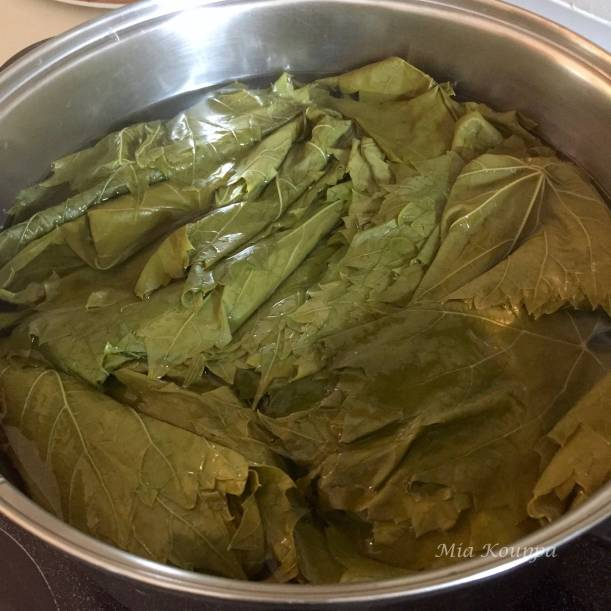Vine leaves used for Dolmades