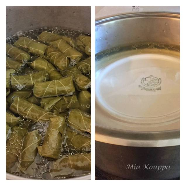 Dolmades, read to cook